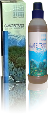K Link Products Gamat Extract With Honey
